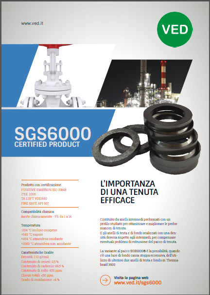 sgs6000 VED Valve Packings